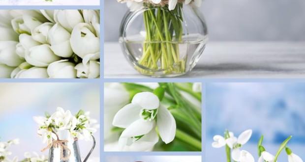 Весна идет! Простые способы весеннего обновления домашнего интерьера