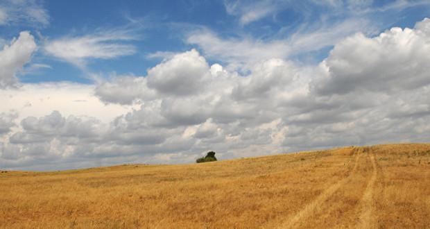 Сенатор Нарусова попросила ГП взять на контроль земельный вопрос фермеров Кубани